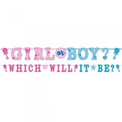 Girl or Boy Jumbo Letter Banner Kit