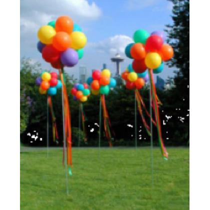 Round Shaped Topiary-Helium