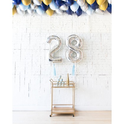DisneyWorld - Foil Numbers & Ceiling Balloons Set