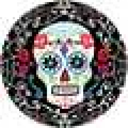 "Day of The Dead 7"" Round Plates"